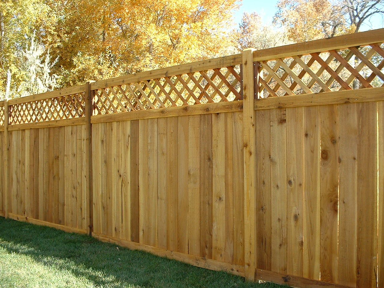 Try Best Fence